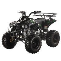 """Dětská čtyřtaktní čtyřkolka ATV Warrior DELUX 125ccm černá 3 rych. poloaut. 8"""" kola"""